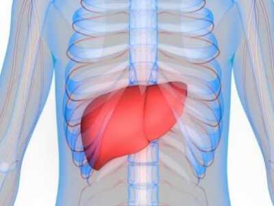 6大食疗方帮你治疗脂肪肝 脂肪肝如何食疗