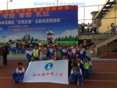 2016年区小学生田径运动会 2016中国田径运动会有哪些