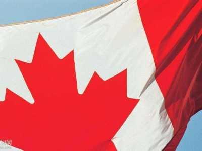 加拿大学历ECA认证该怎幺选择认证机构 学历认证机构