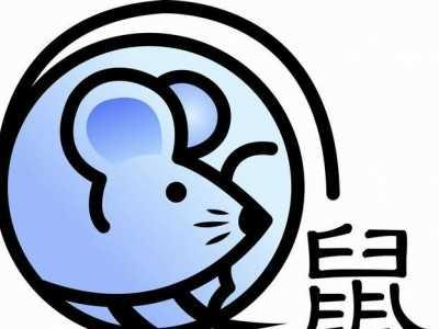 叶权锋谈2018狗年十二生肖运程鼠人运势 鼠人遇狗年运势如何