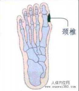 颈椎脚底反射区按摩手法 颈椎不好按摩哪些穴位