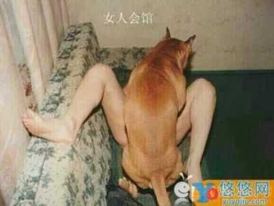 丈夫不在家与狗狗疯狂爱爱十分不雅 狗狗爱爱女