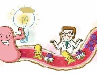 是不是直肠子 直肠子营养会被吸收吗