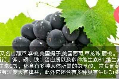 对孕妇好不好 怀孕吃葡萄好吗