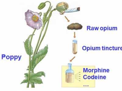 止痛药治痛经会上瘾、损害肝肾 痛经快速止痛药