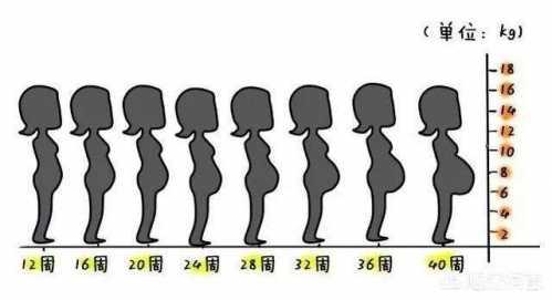 大部分孕妇着急自己肚子大小变化 怀孕多久能出肚子