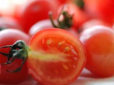 爱吃番茄的人得知道 蕃茄功效