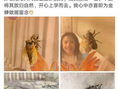 啊我第一次见到夏雨和袁泉的女儿 袁泉夏雨