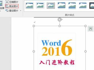 4.32 Word 2016图片更改、删除与删除背景 2016的图片