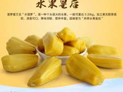 湛江特产菠萝蜜 湛江菠萝蜜