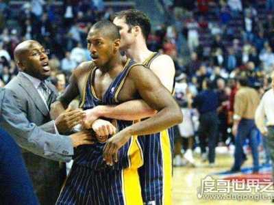 nba打架事件 NBA史上最恶劣的斗殴事件
