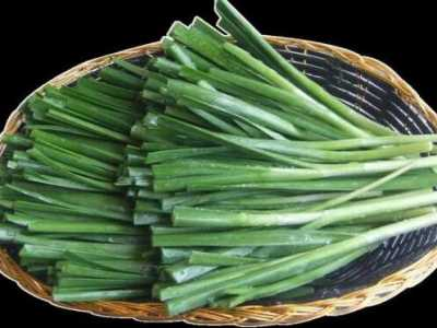 补肾蔬菜有哪些10大补肾的最佳蔬菜类食物排行 补肾的食物有哪些