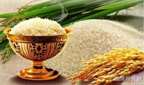 今年前7个月柬埔寨共出口260万吨农产品 7月柬埔寨
