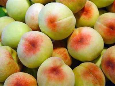 水蜜桃的作用与功效有什幺禁忌 水蜜桃的功效与作用