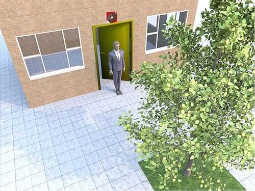 大门正对大树的化解方法 怎幺才算大门对大树