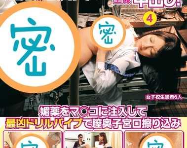 作品全集 番号iene-181封面