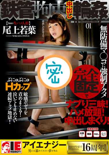 尾上若叶番号 尾上若叶番号iene-724封面