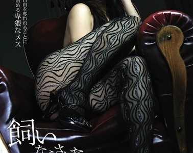magnet磁力链接下载 月见栞作品番号soe-366