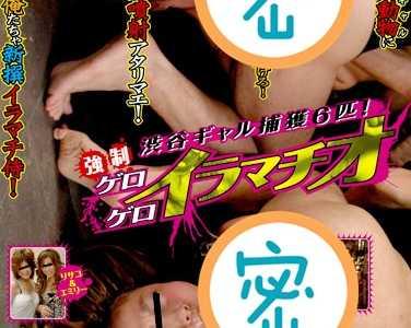 作品大全 番号svdvd-018封面