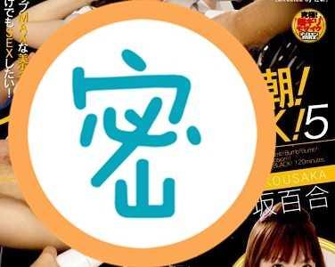 香坂百合番号svdvd-080在线观看