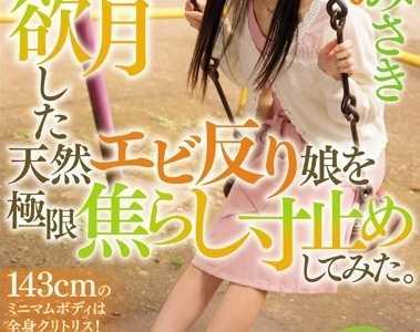 BT种子下载 南田美咲番号wanz-707